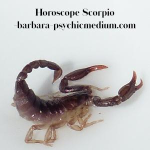 Scorpio Free Horoscope 2020 - Barbara's Psychic Mediums